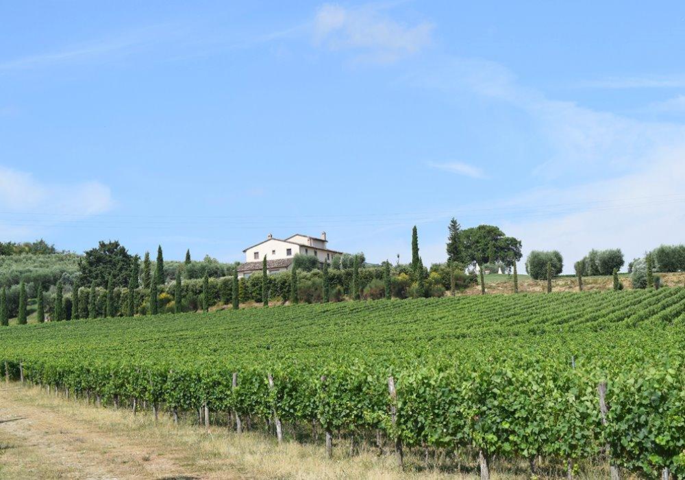 WEEK END DEGUSTAZIONE IN CANTINA Wine Resort Le Buche